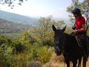 In den Hügeln mit Blick Richtung Cortona