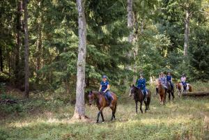 Reiturlaub mit eigenem Pferd