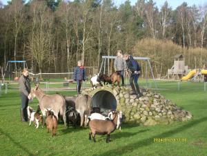 Streichelwiese mit vielen Tieren
