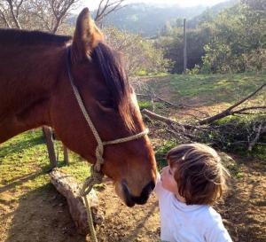 Liebevoll gepflegte Tiere