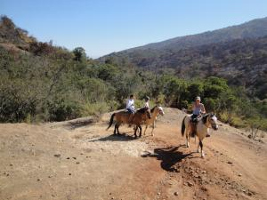 Ausritte ins nahe gelegene Natur Reservat