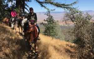 Aussicht vom Pacific Crest Trail