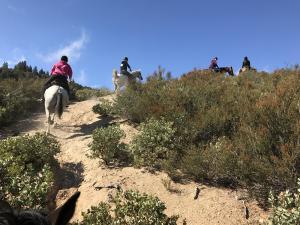 Kletteranstieg zum Pacific Crest Trail