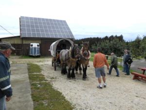 Kutsche auf der Durchreise  auf dem Ponyhof Bareis