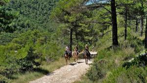 Trailreiten in der Conca de Barbera