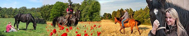 Urlaub mit dem eigenen Pferd - Gastpferde willkommen