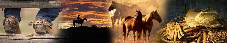 Verzeichnis für Ranches in Kanada - Cowboyleben u. Packtrips