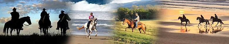 Reiturlaub mit Pferd in Holland Niederlande