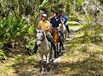Reiten-Weltweit.de - Wanderreiten - Trail Rides